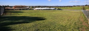 view of the kennels excercise yards facing wangaratta